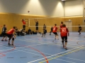 Volleyball Match 5