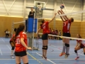 Volleyball Match 6